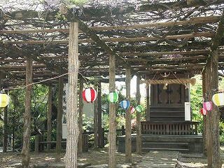 fujiwasi01.jpg